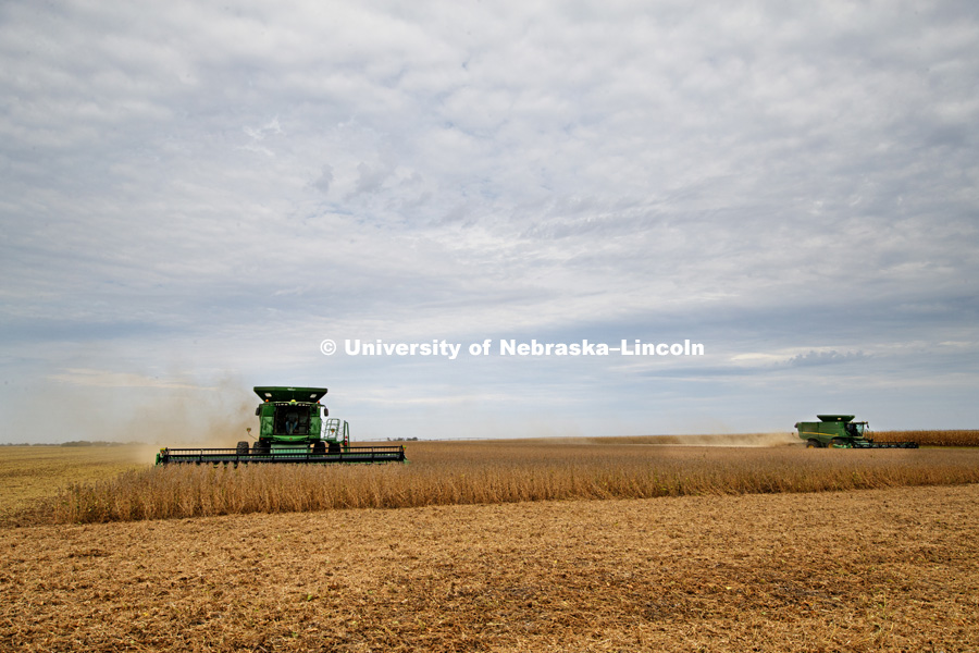 Soybean harvest by the Spohn Farms combine crew near Friend, NE. October 3, 2016. Photo by Craig Chandler / University Communication Photography.