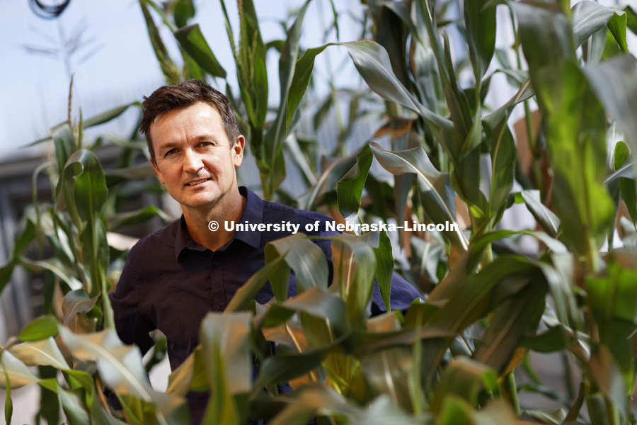David Holding, Associate Professor - Department of Agronomy and Horticulture, and Plant Science Innovation member. October 13, 2016. Photo by Craig Chandler / University Communication.