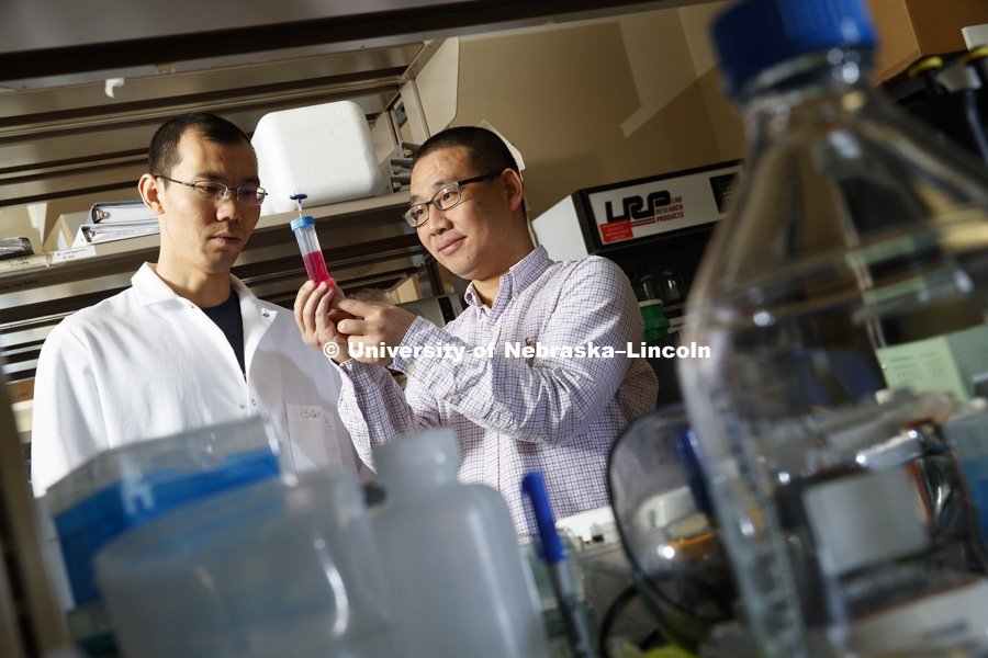 Yuguo Lei, holds part of the prototype system that could streamline and reduce the cost of growing and processing adult stem cells for the personalized treatment of various maladies that include stroke, Alzheimer's and spinal cord injury. He is shown in