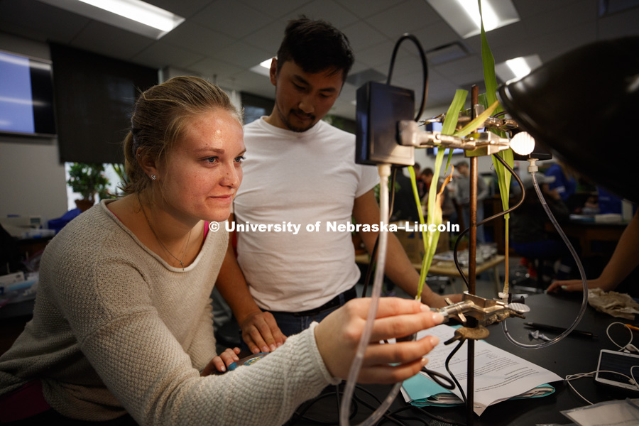 "Jessica Fritson adjusts her plant rigged before a light to measure photosynthesis as graduate student Altangerel ""Auggie"" Tsogtsaikhan watches. Students in LIFE 121L - Fundamentals of Biology 2 Laboratory, taught by Altangerel ""Auggie"" Tsogtsaikhan,"