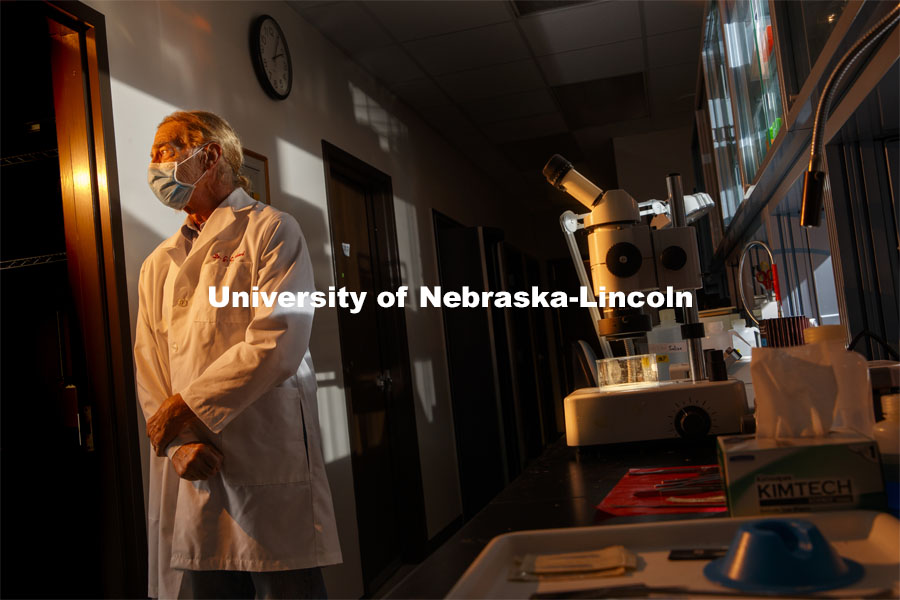 Nebraska's Patricia Sollars and Gary Pickard have helped develop a vaccine candidate for herpes simplex virus 1, best known for causing cold sores around the lip. A new study has also demonstrated its promise against the sexually transmitted herpes simplex virus 2. September 28, 2020 Photo by Craig Chandler / University Communication.