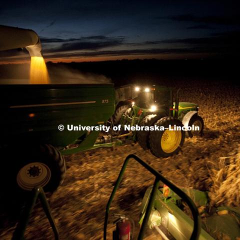 Corn harvest between Dorchester and York. October, 11, 2010.  Photo by Craig Chandler / University Communications