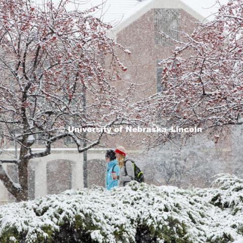 Snow fall on UNL campus.  November 30, 2015. Photo by Craig Chandler / University Communications