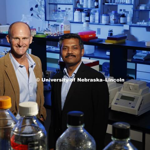 University of Nebraska-Lincoln biologist Jay Storz and Chandrasekhar Natarajan, research assistant professor in biological sciences, whose findings using modern molecular tools has demonstrated even greater evolutionary complexity than many scientists had