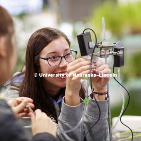 "Allie Welniak attaches a tube to a photosynthesis meter while working on her group experiment. Students in LIFE 121L - Fundamentals of Biology 2 Laboratory, taught by Altangerel ""Auggie"" Tsogtsaikhan, graduate student in biological sciences, in Brace Lab."