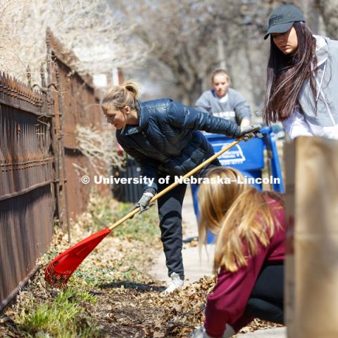 Keeleigh Thayn, Lincoln, and her Gamma Phi Beta sorority sisters rake leaves along P street during the Big Event. April 7,  2018. Photo by Craig Chandler / University Communication.