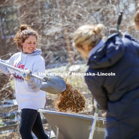 Tess Meyer and her Gamma Phi Beta sorority sisters dig into a huge pile of mulch along 37th Street during the Big Event. April 7,  2018. Photo by Craig Chandler / University Communication.
