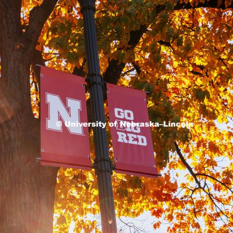 N Banners, Fall on City Campus. October 19, 2018. Photo by Craig Chandler / University Communication.