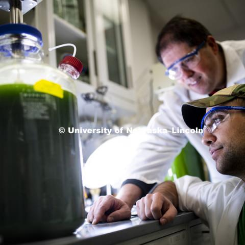 T.J. Nicodemus, graduate student from Lakeville, IN, and lab manager Mark Behrens, eyes the experiment using algae and certain wavelengths of light to remove nitrates from ground water in a Beadle Hall lab. December 3, 2018. Photo by Craig Chandler / University Communication.