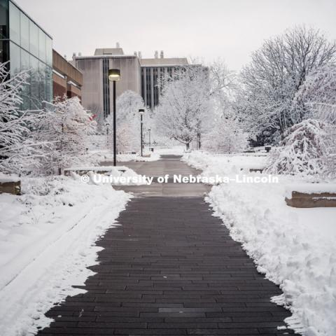 City campus covered in snow, brick walkway near Adele Learning Commons. January 12, 2019. Photo by Justin Mohling, University Communication.