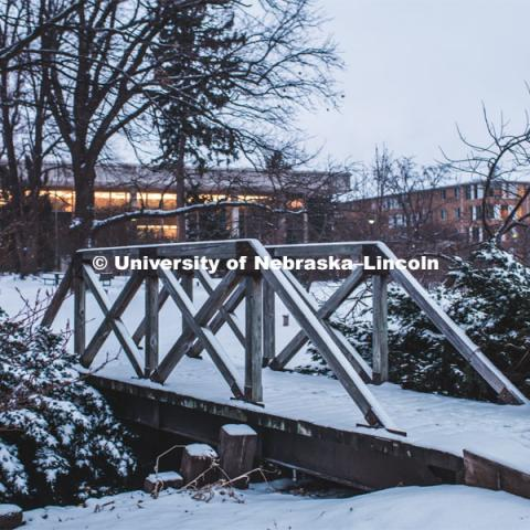 Snow covered bridge in the Maxwell Arboretum between the C.Y. Thompson Library and the College of Dentistry on East Campus. February 11, 2019. Photo by Justin Mohling / University Communication.