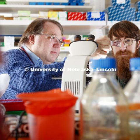 Peter Angeletti, Associate Professor, School of Biological Sciences, and Cameron Klein, graduate student in virology, have discovered a link between the HPV (Human papillomavirus) virus and how various bacteria effect its growth, a link between the cervical microbiome and whether women develop pre-cancerous lesions. February 18, 2019. Photo by Craig Chandler / University Communication.