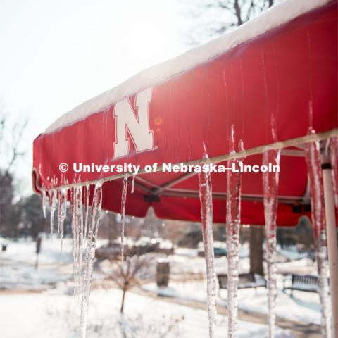Icicles hang off the umbrellas on this snowy day at the UNL Dairy Store on East Campus. February 20, 2019. Photo by Justin Mohling / University Communication.