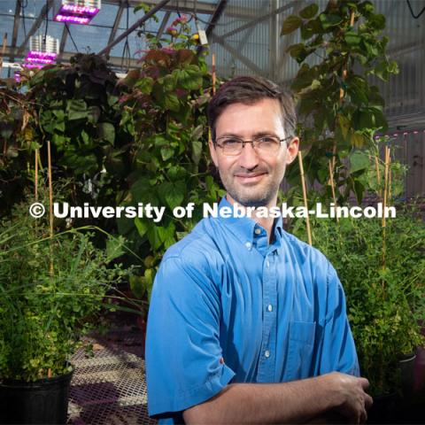 Marc Libault, associate professor and plant biologist in the Department of Agronomy and Horticulture at the University of Nebraska–Lincoln. Photo for the 2019 publication of the Strategic Discussions for Nebraska magazine. June 7, 2019, Photo by Gregory Nathan / University Communication.