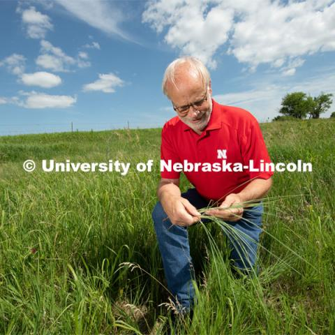 Walter Schacht, professor in Department of Agronomy and Horticulture at the University of Nebraska–Lincoln takes a look at the roots of grass at Nine Mile Prairie. Photo for the 2019 publication of the Strategic Discussions for Nebraska magazine. July 1, 2019, Photo by Gregory Nathan / University Communication.