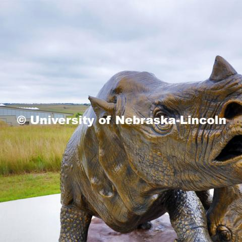 Ashfall rhinos, a sculpture by artist Gary Staab welcomes visitors to Ashfall Fossil Beds State Historical Park. Ashfall Fossil Beds State Historical Park in north central Nebraska. August 2, 2019. Photo by Craig Chandler / University Communication.