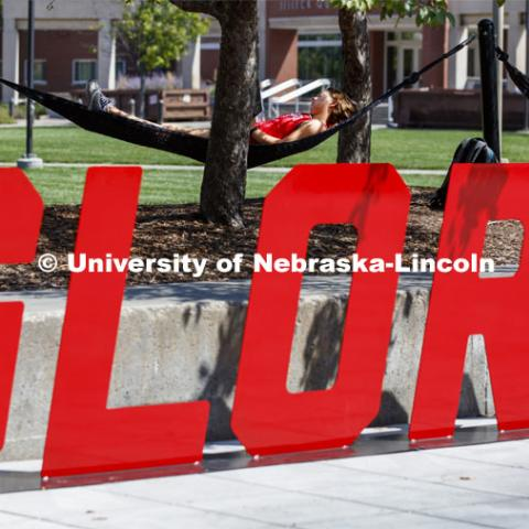 Glory sign out front of the hammocks on city campus. August 19, 2019. Photo by Craig Chandler / University Communication.