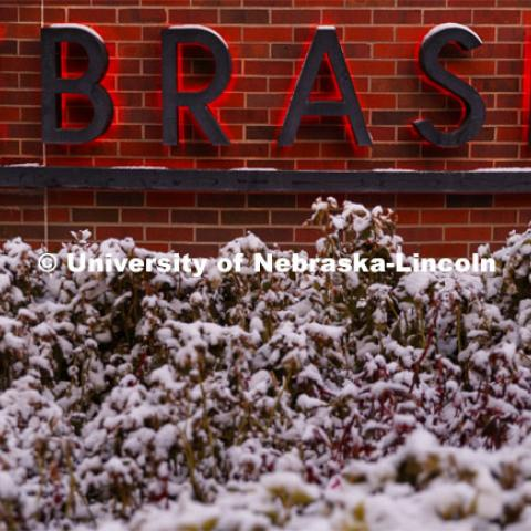 University of Nebraska sign outside of the Van Brunt Visitors Center, first snow. Snow covered bushes. October 29, 2019. Photo by Craig Chandler / University Communication.