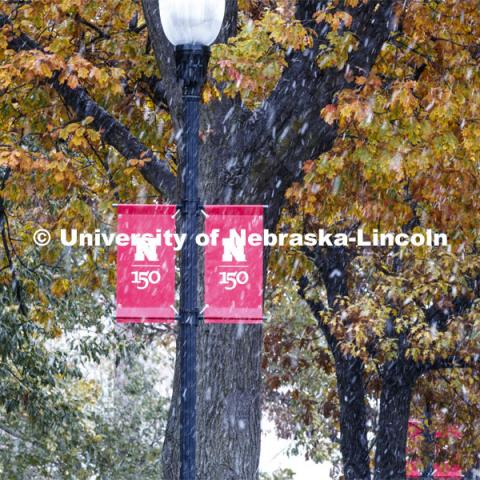 The trees are still holding their fall leaves as the snow falls. Snow on campus. October 30, 2019. Photo by Craig Chandler / University Communication.