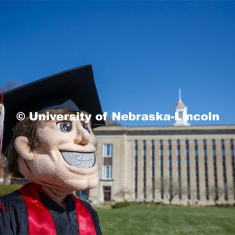 Herbie Husker stands on the lawn in front of Love Library and is decked out in graduation attire for the Spring Commencement that was which streamed online and aired on NET because of the COVID-19 pandemic. April 10, 2020. Photo by Craig Chandler / University Communication.