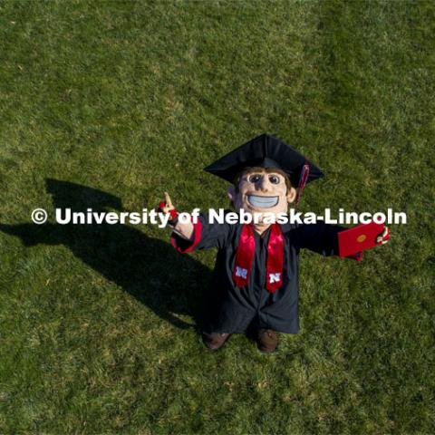 Herbie Husker proudly holds a diploma and is decked out in graduation attire for the Spring Commencement that was which streamed online and aired on NET because of the COVID-19 pandemic. April 10, 2020. Photo by Craig Chandler / University Communication.