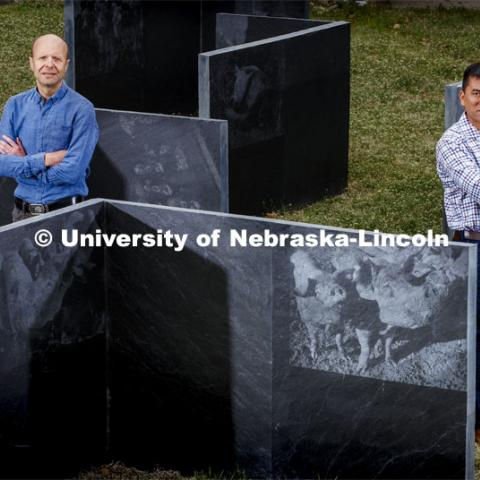 Nebraska's Daniel Ciobanu, left, and Hiep Vu have received $1 million in separate NIFA grants to continue research that could lead to the development of vaccines and genetic-selection tools to fight some of the world's costliest swine diseases.. They are pictured at the Animal Science Complex on East Campus. May 18, 2020. Photo by Craig Chandler / University Communication.