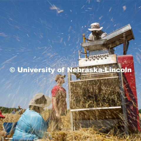 Chaff flies as Stephen Baenziger, professor and Wheat Growers Presidential Chair in the University of Nebraska–Lincoln's Department of Agronomy and Horticulture, thrashes wheat samples harvested from the ag fields at 84th and Havelock. July 8, 2020. Photo by Craig Chandler / University Communication.