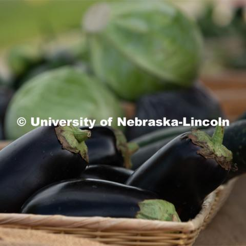 Eggplant and cabbage for sale at the Fallbrook Farmers Market in northwest Lincoln, Nebraska. July 23, 2020. Photo by Gregory Nathan / University Communication.