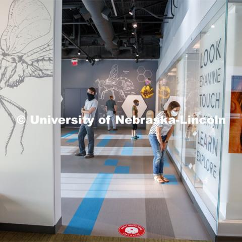 People social distance at the Nebraska State Museum in Morrill Hall. The museum will open August 5 with new procedures to keep patrons healthy and safe. July 29, 2020. Photo by Craig Chandler / University Communication.