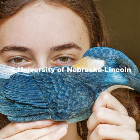 Kinga Aletto, junior in College of Agriculture Sciences and Natural Resources, works on a life-size clay model of the Javan blue-banded kingfisher. Her UCARE research project includes making a life size Javan Blue-banded king out of clay. The reason why this bird was chosen was because it is critically endangered and receives little to no coverage on this fact. Through learning new clay building skills, she is able to bring this bird to life in Nebraska and bring awareness to its' struggles. August 7, 2020. Photo by Craig Chandler / University Communication.