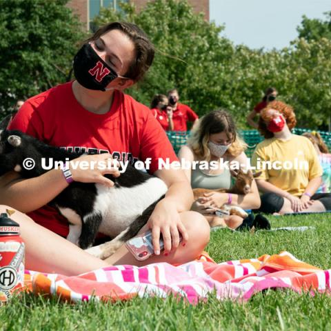 Students hold goats as they participate in yoga during Wellness Fest at Meier Commons. August 22, 2020. Photo by Jordan Opp for University Communication.