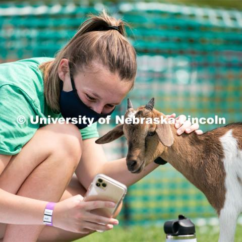 A student takes a selfie with a goat during Wellness Fest at Meier Commons. August 22, 2020. Photo by Jordan Opp for University Communication.