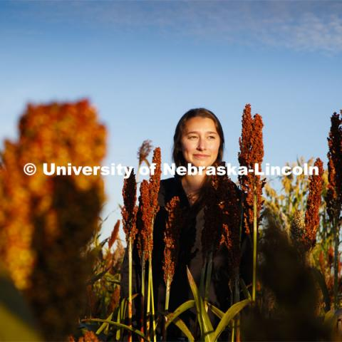 Graduate student Mackenzie Zwiener looks over ripe sorghum plants in her test field northeast of 84th and Havelock. September 29, 2020. Photo by Craig Chandler / University Communication.
