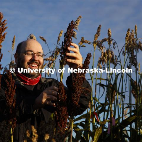 Professor James Schnable and graduate student Mackenzie Zwiener look over ripe sorghum plants in Zwiener's test field northeast of 84th and Havelock. September 29, 2020. Photo by Craig Chandler / University Communication.