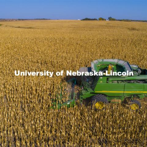 A combine works through a corn field north of Adams, NE. Fall harvest. October 7, 2020. Photo by Craig Chandler / University Communication.